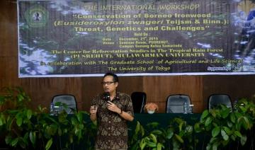 Seminar Ulin